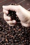 Grab beans Stock Image