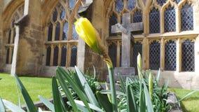 Grab und Blume Stockfoto