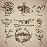 Grabado de un juego de té: la manzanilla, bálsamo de limón, menta, limón, cucharas, subió, las hojas de té, caldera Un sistema de Fotografía de archivo libre de regalías