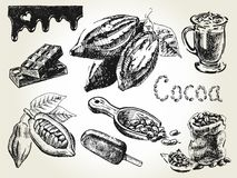 Grabado determinado del cacao Imagen de archivo libre de regalías