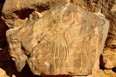 Grabados de la roca de las jirafas, lecho de un río seco Mathendous (la UNESCO) Fotografía de archivo libre de regalías