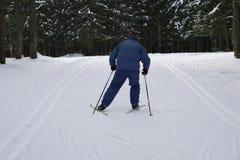 Grabben rider vänstert framme av det pittoreska landskapet Denna skidåkare, honom ` s som bär ett vintersportomslag royaltyfria bilder