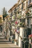 Grabblumen im Kirchhof Stockfotos