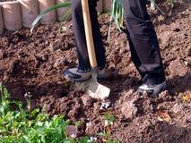 Graben des Gartens stockfotos