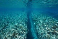 Graben geschnitzt durch Schwellen Unterwasserpazifischen ozean lizenzfreie stockfotografie