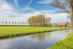 Graben mit einer Baumreihe und Bauernhaus im Beemster-Polder stockbild