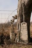 Grabstein durch Baum Lizenzfreies Stockfoto