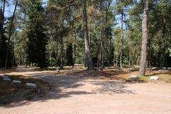 Grabsteine auf dem Feld der Ehre Loenen in den Niederlanden stockbilder