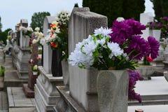 Grabsteine mit Blumengaben Stockbild