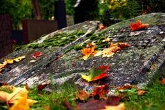 Grabsteine und Gelbblätter Stockfoto