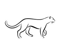 Grace Panther Ink Line Art Stock Photography