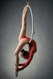 Graceful acrobat performs gymnastic trick on hoop. Graceful acrobat performs gymnastic trick on hanging hoop Royalty Free Stock Photo