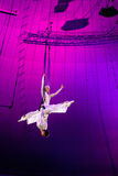 Graceful aerial trick Royalty Free Stock Photo
