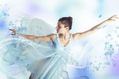 Graceful ballerina Stock Photography