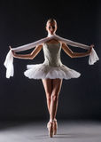 Graceful ballerina dancing looking at camera Stock Photo