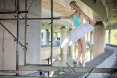 Graceful ballerina doing dance exercises on a Royalty Free Stock Photography
