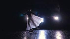 Graceful ballerina jumping in slow motion. Silhouette. HD. stock video footage