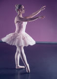 Graceful ballerina standing in pink tutu Stock Photos