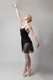 Graceful ballerina in studio Stock Image