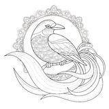 Graceful bird coloring page Royalty Free Stock Photos