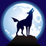 Graceful-black-wolf. Vector scene of the silhouette of the wolf Stock Image