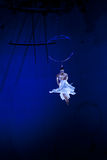 Graceful dance performed on the aerial ring Royalty Free Stock Photography