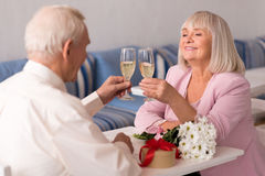 Graceful elderly couple holding up glasses of champagne Royalty Free Stock Images