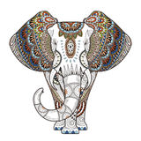 Graceful elephant vector illustration