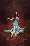 Graceful fairy. Royalty Free Stock Photo
