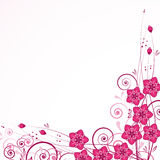Graceful floral background. Stock Photos