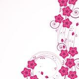 Graceful floral background. stock images