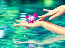 Graceful gentle hands. Hand care . Beautiful hands are washed in water Royalty Free Stock Image