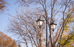 Graceful green lantern against the blue sky and the autumn Park Royalty Free Stock Images