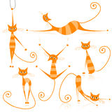 Graceful orange striped cats for your design Royalty Free Stock Image