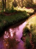 Graceful River Stock Photography