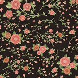 Graceful seamless floral pattern Stock Images