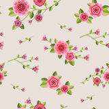 Graceful seamless floral pattern Stock Image