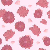 Graceful seamless floral pattern Royalty Free Stock Images