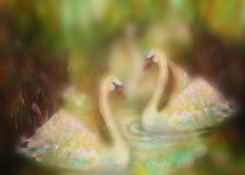 Graceful swans in love swimming together, illustration collage.  Stock Images