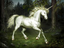 Graceful unicorn in the forest Stock Photo