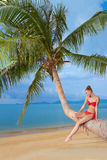 Graceful woman sitting on palm tree Stock Photography