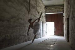 Gracefull balerina indoors zdjęcie stock