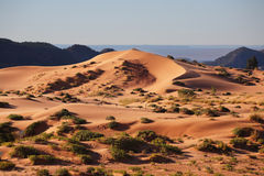Gracefully curved  sand dune Royalty Free Stock Images