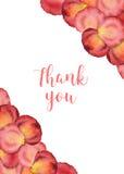 Gracias cardar con los pétalos color de rosa de la flor de la acuarela Fotos de archivo libres de regalías