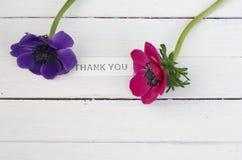 Gracias con las flores Imágenes de archivo libres de regalías