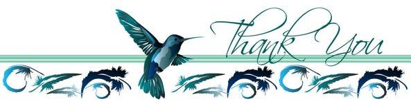 Gracias la tarjeta 3 del colibrí Foto de archivo libre de regalías
