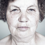 Gracious senior lady portrait Royalty Free Stock Image