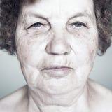 Gracious senior lady portrait Royalty Free Stock Image