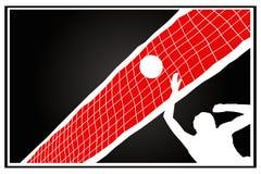 gracz siatkówka Zdjęcie Stock