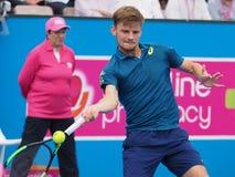 Gracz w tenisa David Goffin narządzanie dla australianu open przy Kooyong Klasycznym Powystawowym turniejem Zdjęcie Stock
